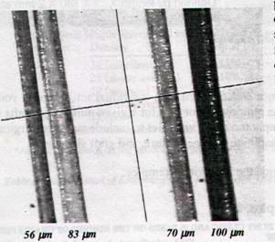 Hajszálak mérete: 56 -100 mikrométer (0,056 -0,1 mm)